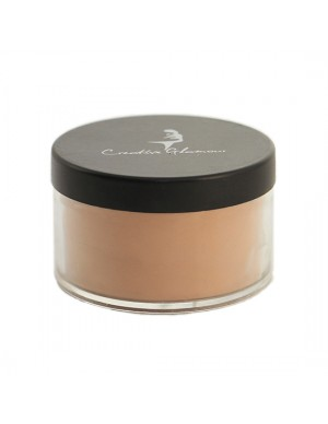 Translucent Loose Powder No.5